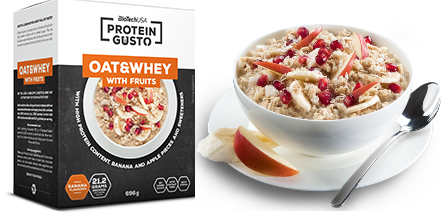 Biotech Protein Gusto Oat and Whey